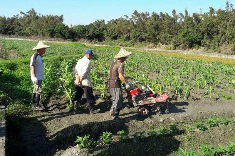 「新農民創業輔導訓練課程」包含專業知識課程及田間實作訓練。 (圖/新北市農業局提供)