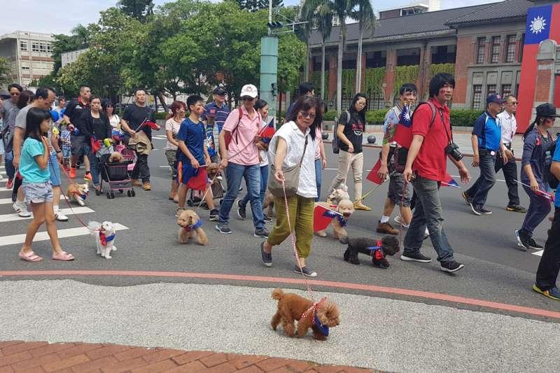竹市國慶嘉年華遊行隊伍出現「毛小孩隊」格外吸睛。(圖/方詠騰攝)
