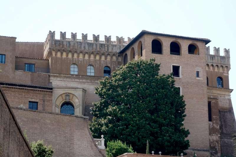 樹右側的塔樓內即是梵蒂岡博物館布拉曼德螺旋梯處(曾廣儀攝)