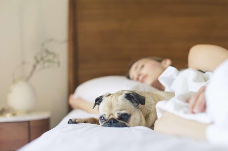 失眠怎麼辦?可以吃安眠藥嗎?讓醫師來教你正確戰勝失眠!(圖/取自pexels)