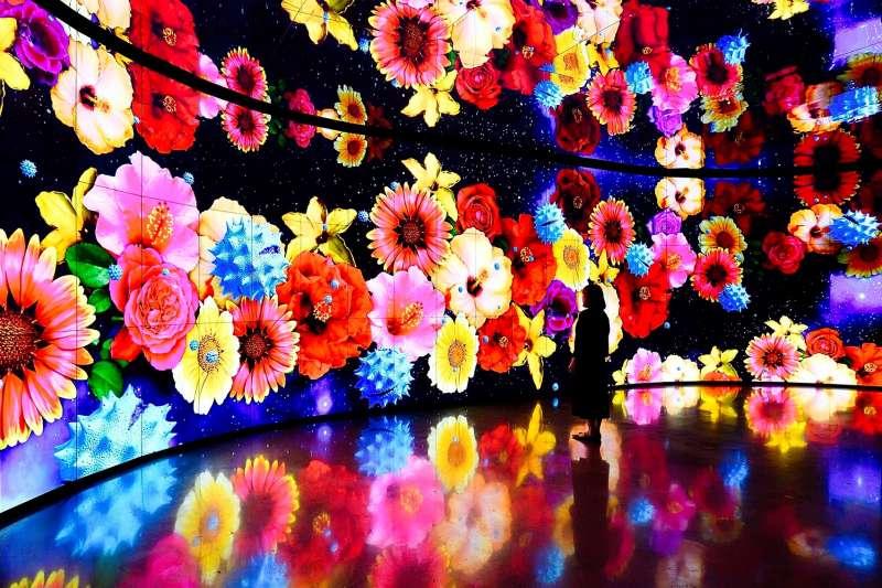 友達光電攜手國立臺灣博物館,呈現「微觀新視界・舞動生命之美」。(國立臺灣博物館提供)