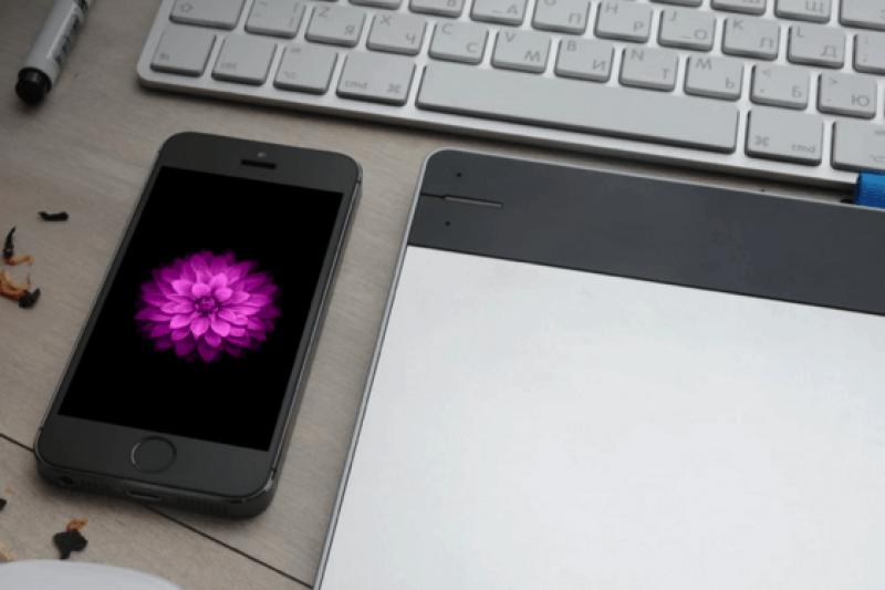 iPhone 桌布有多貴?竟然光一朵花就拍了 285 小時!秉著一貫的超高標準要求,蘋果張張桌布都親自攝影,為求最佳呈現還堅決不用電腦特效。這篇文章告訴你它們都是怎麼來的…(圖/愛范兒提供)