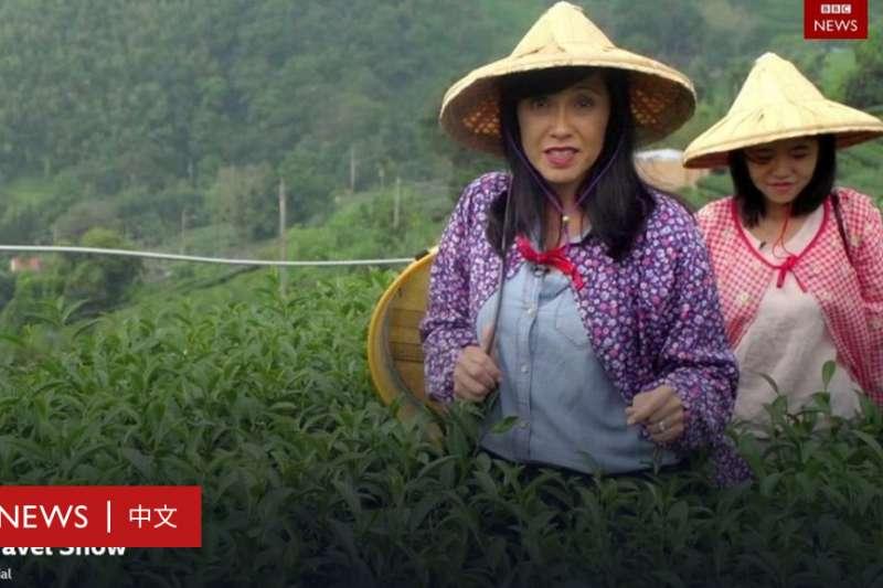 BBC旅遊秀主持人羅伯茨(左)到阿里山體驗採茶(BBC中文網)