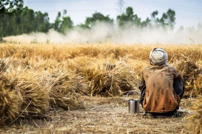 印度農民(取自Pixabay)