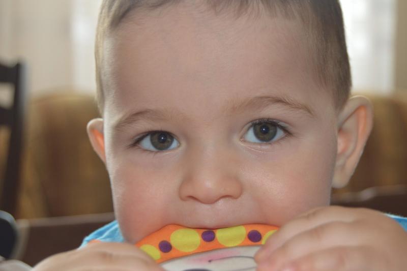 為了避免寶寶過敏,許多父母都會避免孩子吃致敏食物,但最新研究指出,其實不避諱這些食物,才能大大降低過敏體質風險。(圖/pxhere)
