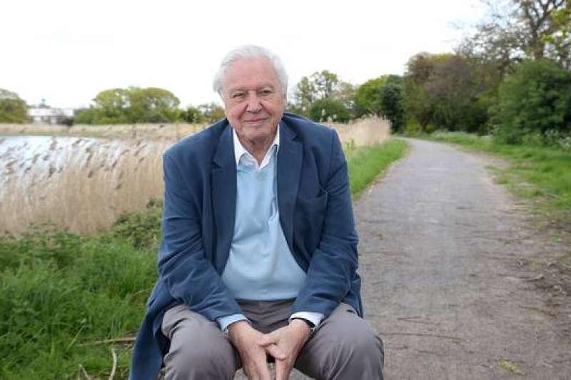 英國知名自然史學家艾登堡祿呼籲各國領袖盡快採取行動,對抗暖化危機(美聯社)