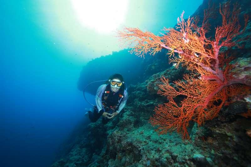 保護珊瑚除了不採集、踐踏還有不購買之外,從事任何水上活動都請以防曬衣物取代防曬乳。(圖/ Reeve L提供)