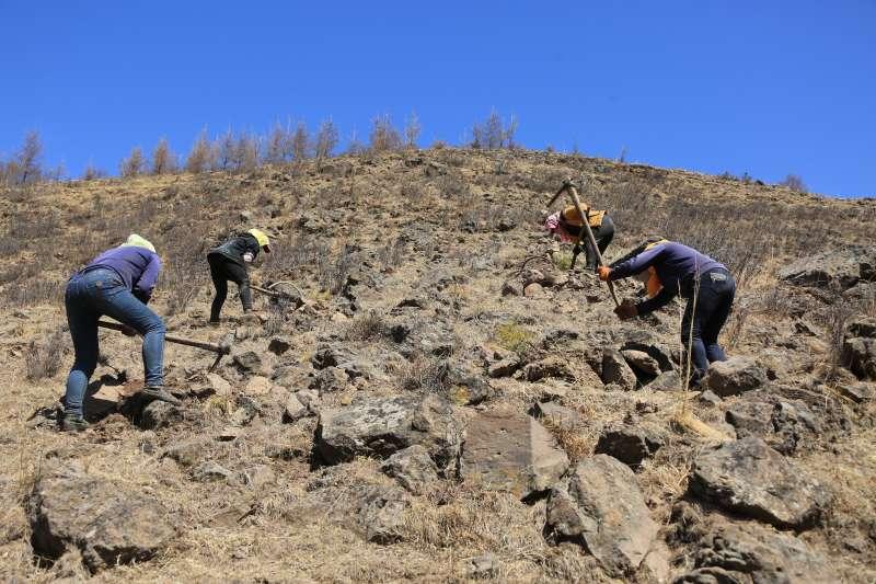中國塞罕壩國家森林公園機械林場工人在石質陽坡上造林。(新華社)
