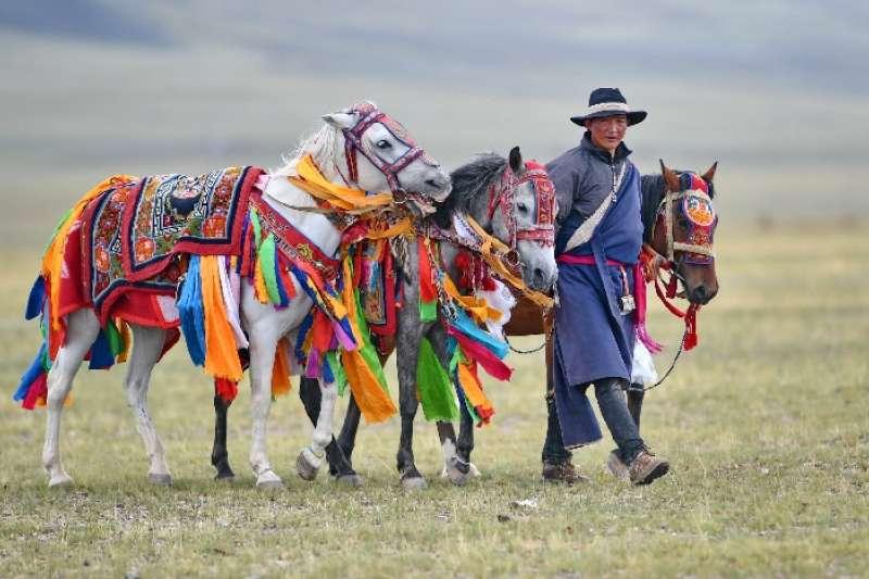 西藏阿里的一名農牧民在草原上遛馬(新華社)