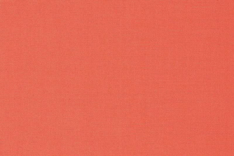 國際色彩權威機構「彩通」(PANTONE)公布2019年代表色:活珊瑚橘(Living Coral)。(AP)