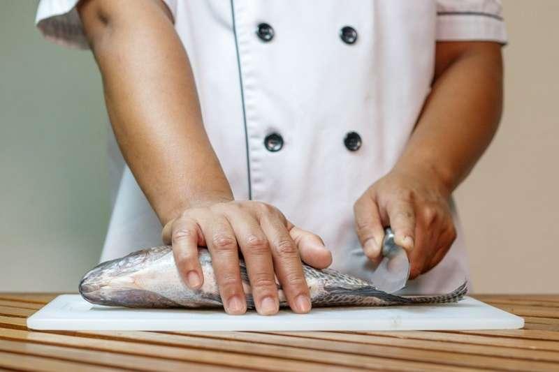 近年已有研究提到,魚不只擁有記憶,而且普遍對痛覺特別敏感。(圖/*CUP)