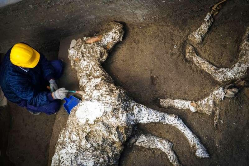 2018年12月23日,考古學家正在調查龐貝古城近郊「神秘別墅」的馬匹遺骸。(AP)