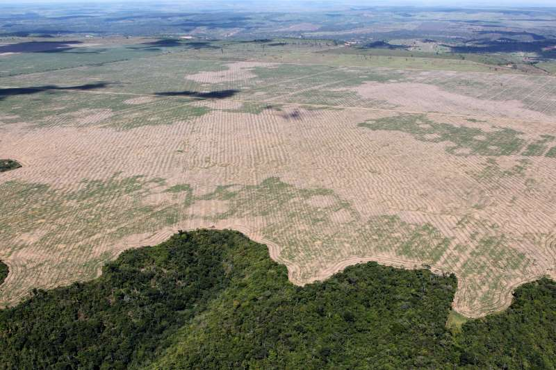 巴西亞馬遜雨林森林除伐嚴重(Ibama from Brasil - Operação Hymenaea, Julho2016@Wikipedia / CC BY 2.0)