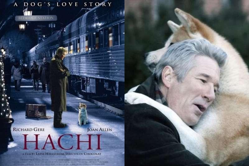 這 6 部講述主人和寵物間的經典電影,超級催淚啊!(圖/女子學提供)
