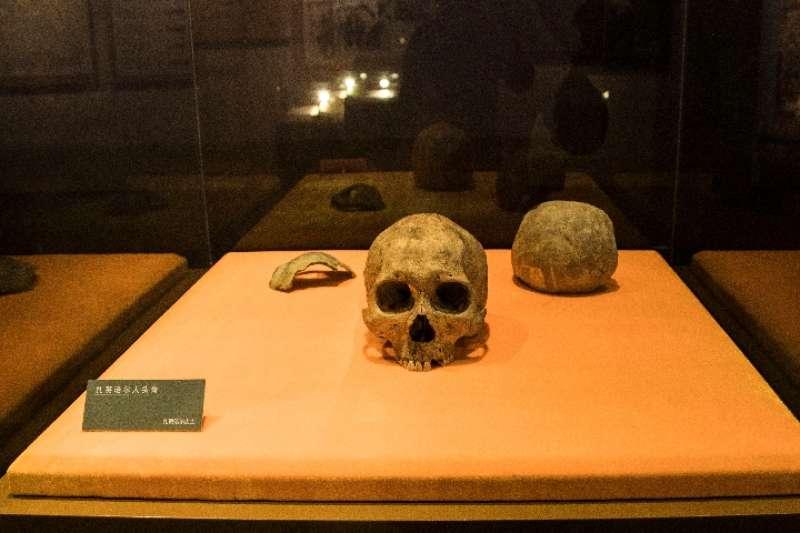 扎賚諾爾博物館內展覽的「扎賚諾爾人」頭骨化石。(新華社)