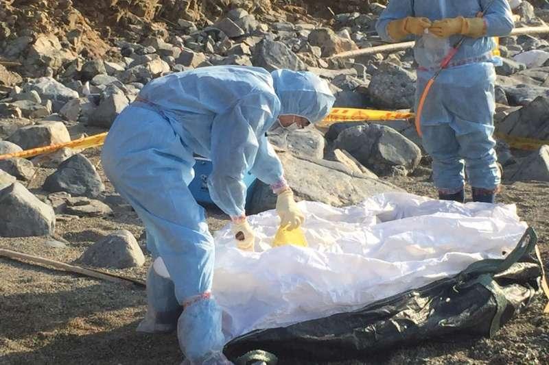 離島地區近來一再傳出發現中國海漂豬,並已有「非洲豬瘟」病毒陽性檢測案例(防檢局)