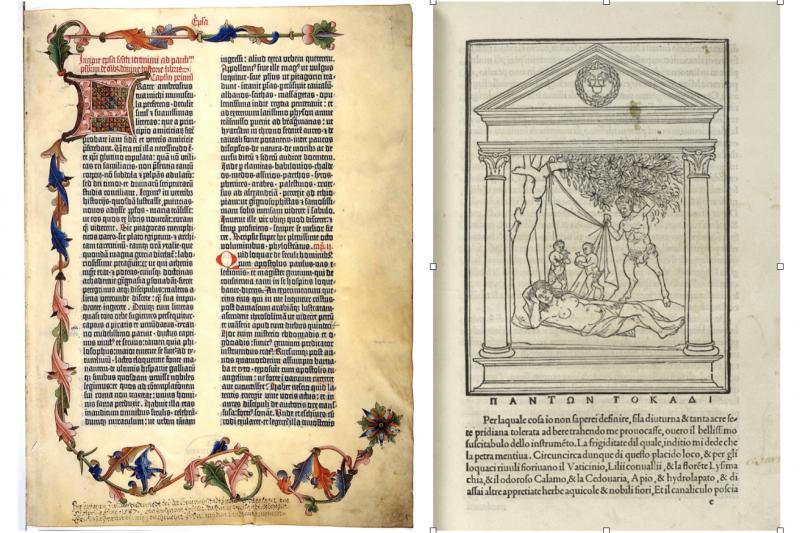 搖籃本時代的兩個里程碑-《四十二行聖經》與《尋愛綺夢》。(作者提供)