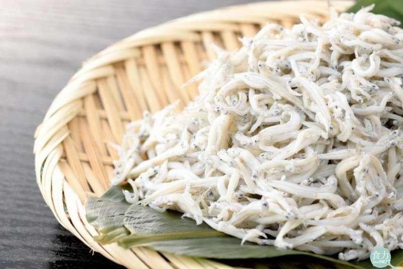 我們食用的魩仔魚並非單一種魚種類,而主要指鯷科和鯡科的魚幼苗,主要以刺公鯷、異葉公鯷以及日本鯷三魚為主。(圖/食力提供)