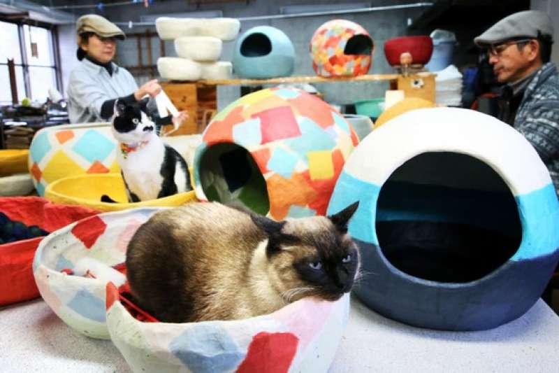 貓咪看似愜意地生活在和紙製成的「貓屋」、「貓床舖」。(圖/潮日本提供)