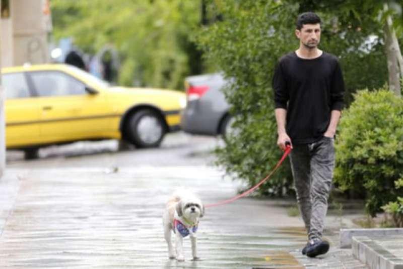 「與狗同行」在德黑蘭被視為「犯法」。(BBC中文網)