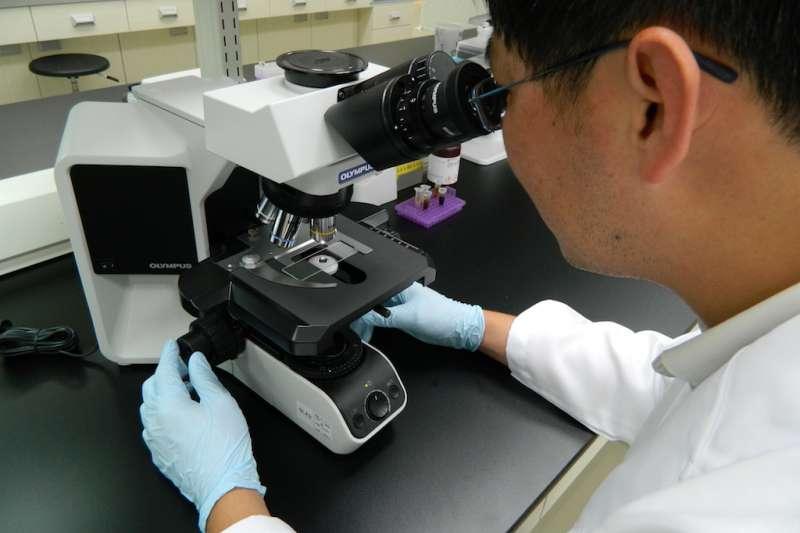 國璽集團積極以幹細胞技術,發展用於預防和治療骨質疏鬆的新藥組合。(圖/國壐幹細胞提供)