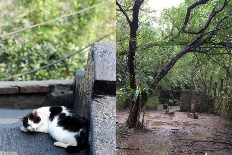 侯硐老街(左)、菁桐石底大斜坑(右)。(女子學提供)