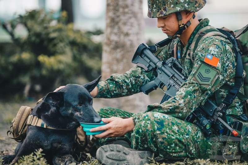 20190318-陸軍特戰指揮部特4營日前展開濱海要地行軍訓練,不僅官兵所到鄉鎮受到當地居民歡迎,還有一位「下士」同樣受到關注,牠是此次一同行軍的特戰犬「HOLA」。(取自軍聞社)