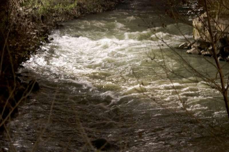 滾滾河水夾雜著交集的思緒(曾廣儀攝)