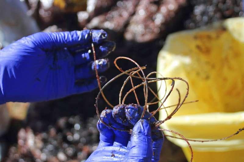 義大利地中海薩丁尼亞島一處沙灘,上週有一隻體長8公尺的抹香鯨屍體被沖上岸,母鯨孕育生命的體內,竟塞滿22公斤的塑膠垃圾。(AP)
