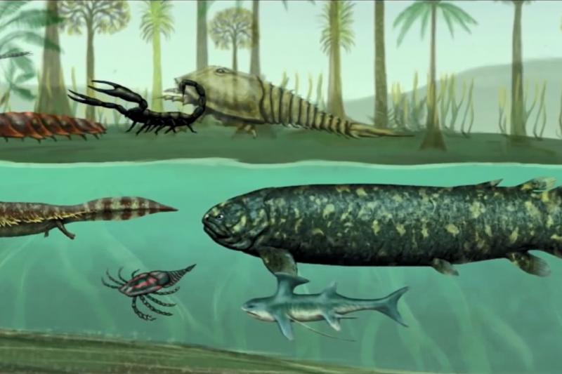 在人類出現前的世界,地球資源無比豐富,演化出許多超乎你想像的龐大生物。(圖/取自youtube)