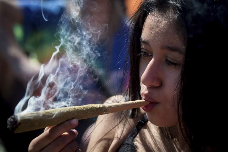 大麻示意圖(AP)