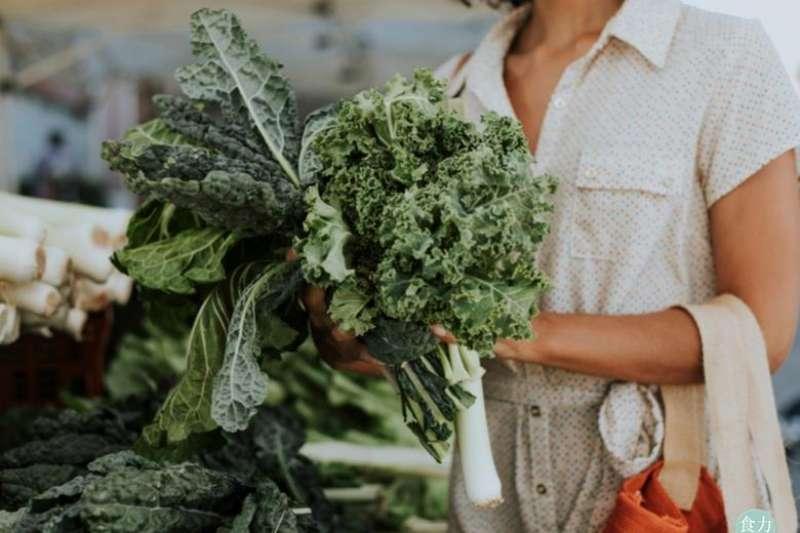 近年來歐美國家流行的一個綠色蔬菜叫做羽衣甘藍(Kale),甚至被譽為「超級食物」!其葉黃素及玉米黃素的含量高出菠菜許多,是葉菜類的第一名!(圖/食力foodNEXT提供)