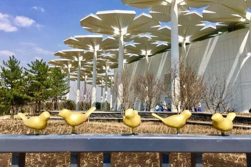 北京世園會現場( Xuan Wu攝)