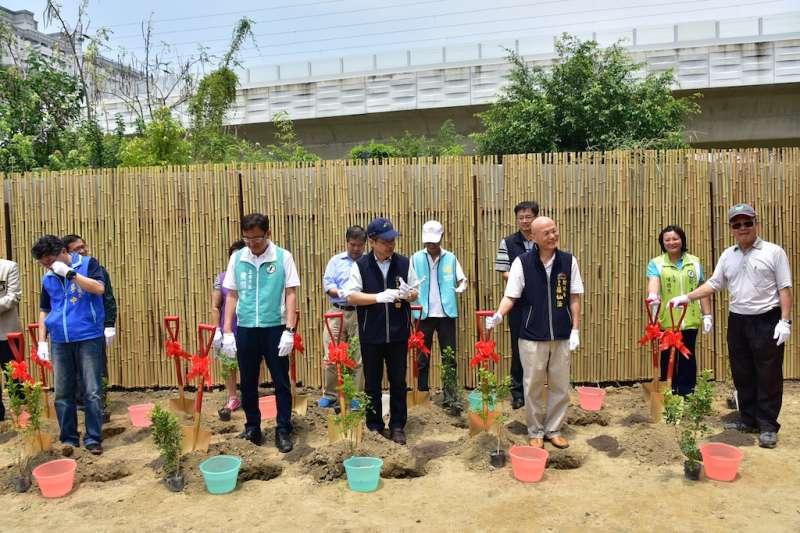 台中市政府推動植樹計畫,落實市民減碳意識。(圖/台中市政府提供)