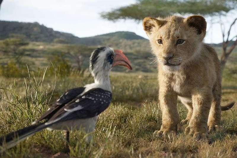 《獅子王》重製上映,吸引一票粉絲到電影院朝聖(圖/IMDb)