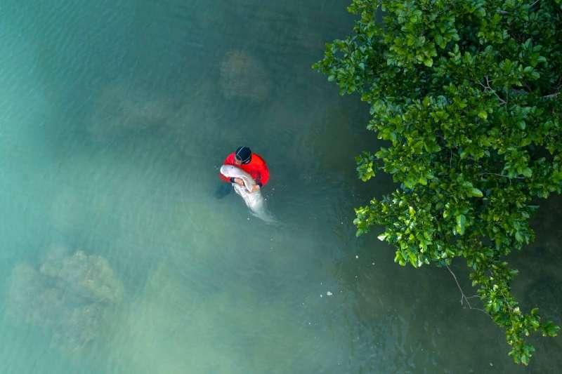 保育人員最早是在泰國南部的甲米府近海發現迷途的馬里安。