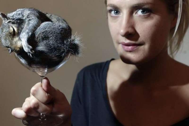 摩根可能是動物標本製作行業最有名的英國女性(BBC中文網)
