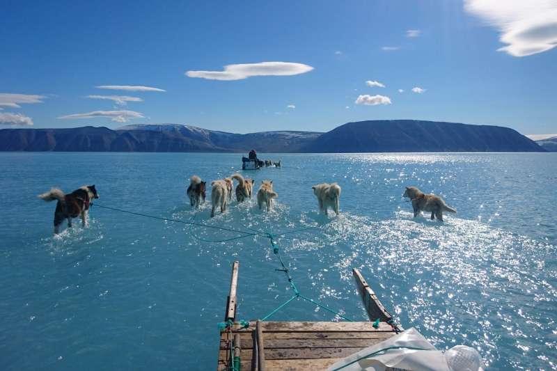 北極到底有多熱,一張圖告訴你!(圖/Rasmus Tonboe @twitter)