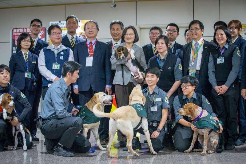 20190621-農委會防檢局檢疫犬以米格魯為主要使用的犬種,近半年來由於因應對岸中國非洲豬瘟疫情蔓延,檢疫犬越趨重要,不少民眾認為其是「護國神犬」,藉由靈敏嗅覺,不讓外來豬肉製品入境台灣。圖為總統蔡英文視察桃園機場,特別與檢疫犬互動。(取自總統府)