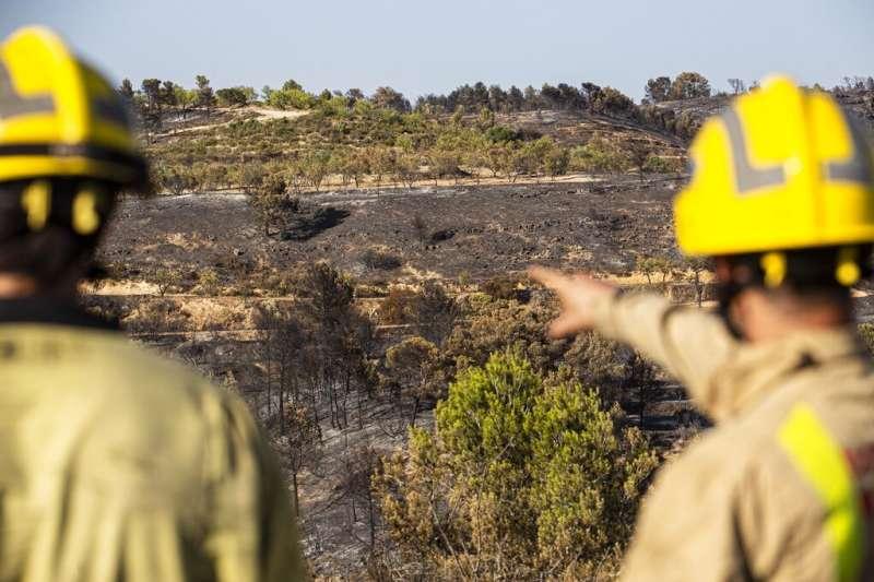 2019年西班牙官方派出600名警消人員、國軍支援加泰隆尼亞省的救火行動。(AP)