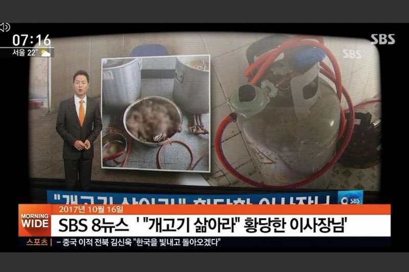 南韓狗肉文化興盛,但近年受動保意識興起,民眾已漸漸不吃狗肉,圖為某公司職員告發上司要求職員烹煮狗肉的新聞。(翻攝影片)
