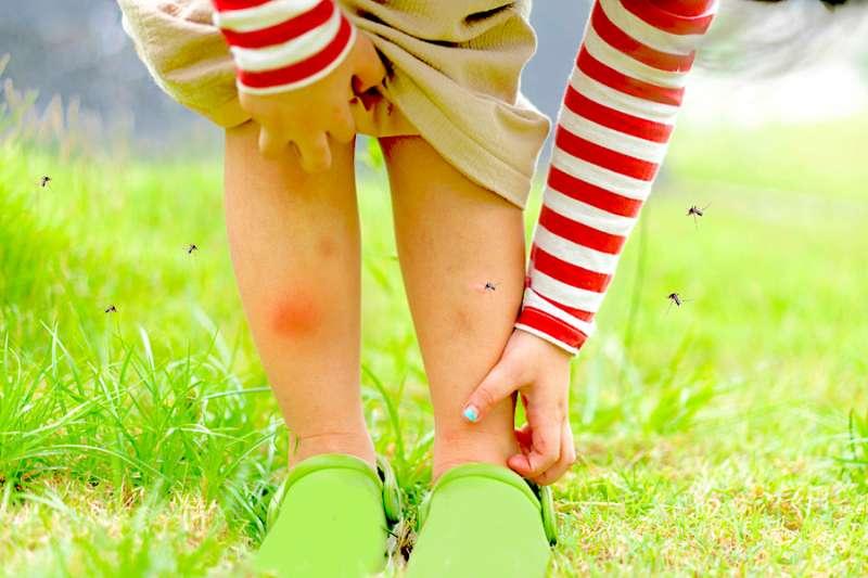 夏天到了,出門在外不可不注重防蚊(圖/Hello醫師)