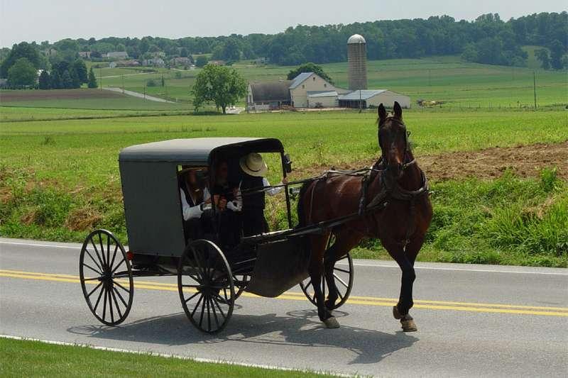 美國賓州的阿米什人(Amish)(Utente:TheCadExpert@Wikipedia / CC BY-SA 3.0)