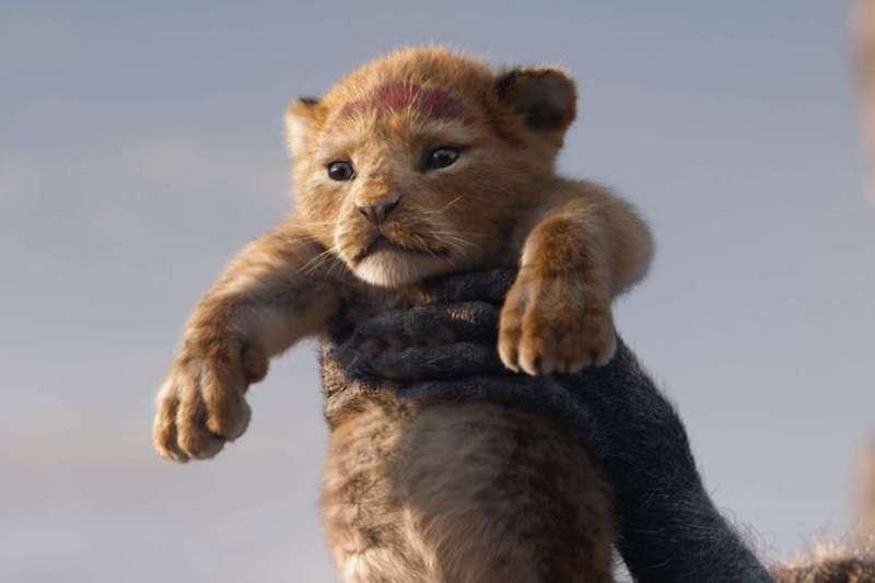 《獅子王》經典重拍五天票房破億,刷新迪士尼動畫改編紀錄(圖/IMDb)