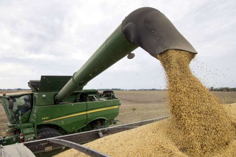 中美貿易戰影響美國大豆農民深遠,美國農業部提補助方案止血(AP)