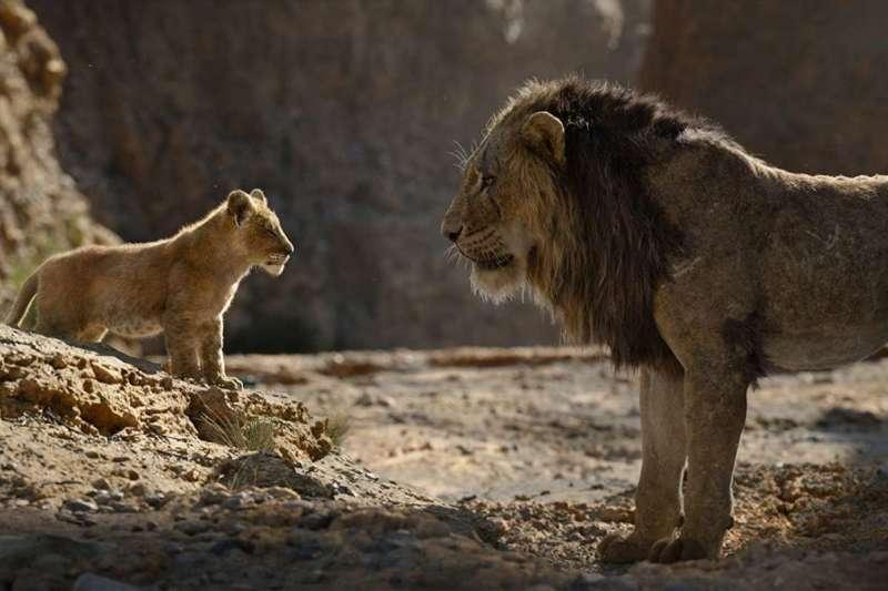 《獅子王》上映後影迷評價兩極,有影評甚至狠批真人版是「動物星球」(圖/電影教我們的五件事)