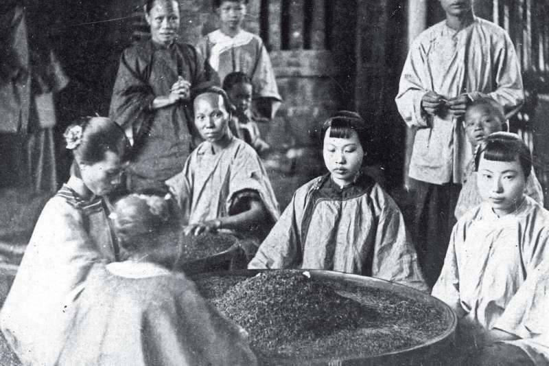 中國人種植茶葉的歷史相當悠久,茶葉也早已不是單純的飲品。(取自視覺中國)