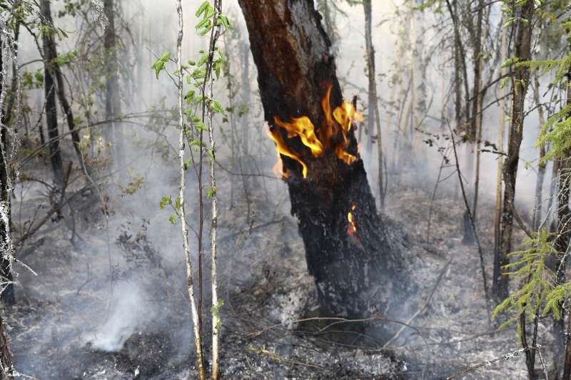 今年7月,多場森林大火在西伯利亞肆虐數日,俄羅斯境內4處宣布緊急狀態。(AP)