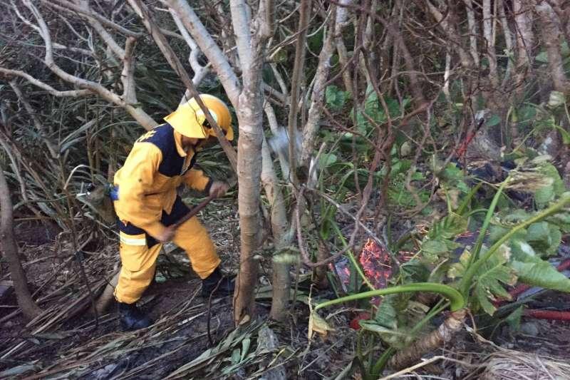 綠島15日中午發生山林大火,延燒27小時、燒掉28公頃林地,16日撲滅後,17日晚間9時許再度復燃。(取自林務局台東林區管理處網站)