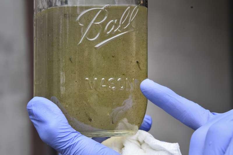WHO檢測出市面上許多大牌飲用水皆含有微塑膠成分。(AP)